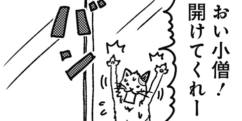 [190回]猫田びより