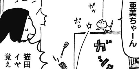 [202回]猫田びより