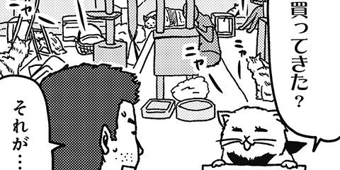 [214回]猫田びより
