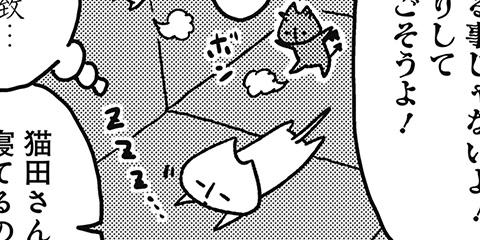 [215回]猫田びより