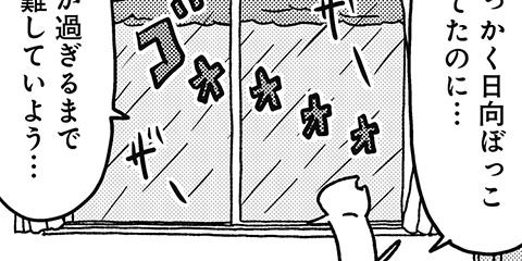 [217回]猫田びより