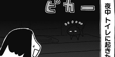 [236回]猫田びより