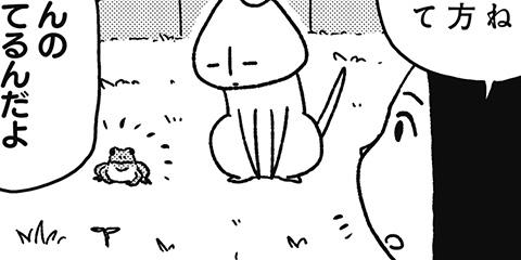 [242回]猫田びより