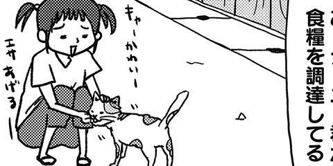 [306回]猫田びより