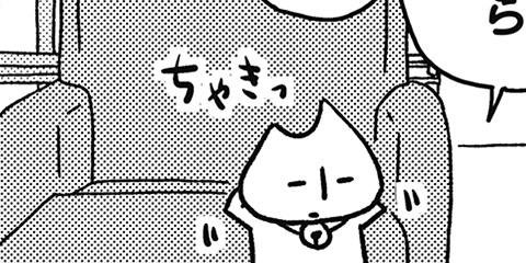 [320回]猫田びより