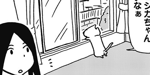 [331回]猫田びより