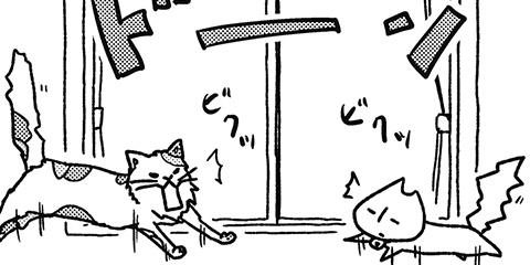 [341回]猫田びより