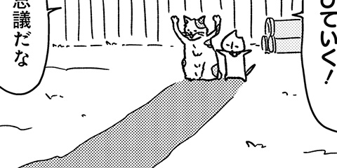 [348回]猫田びより