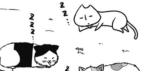 [372回]猫田びより