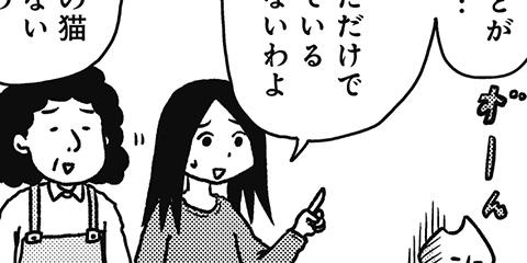 [385回]猫田びより