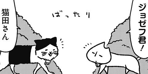 [394回]猫田びより