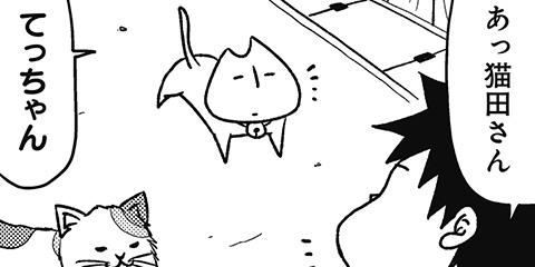 [408回]猫田びより