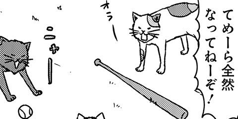 [502回]猫田びより