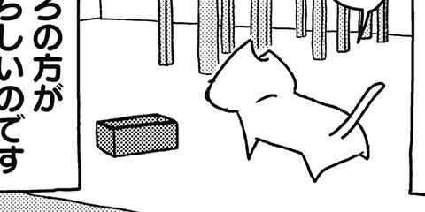[504回]猫田びより