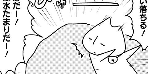 [524回]猫田びより