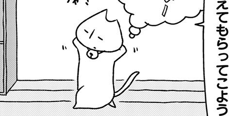 [531回]猫田びより