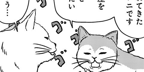 [558回]猫田びより
