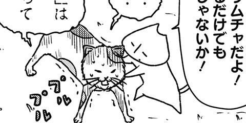 [567回]猫田びより