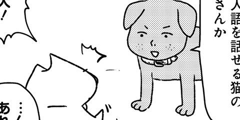 [642回]猫田びより