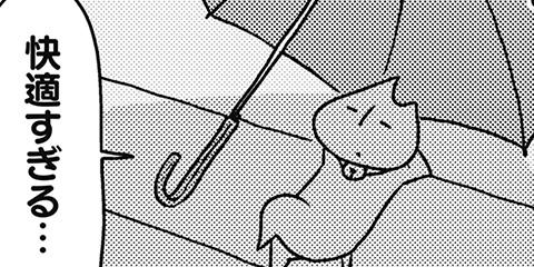 [651回]猫田びより