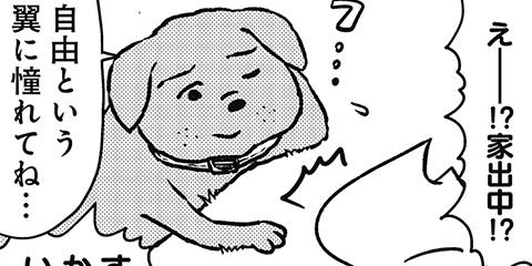 [658回]猫田びより