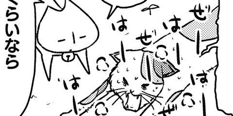 [667回]猫田びより