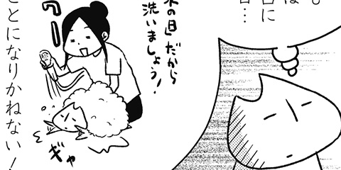 [680回]猫田びより