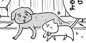 [738回]猫田びより