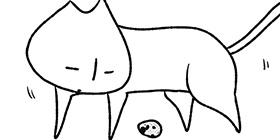 [750回]猫田びより