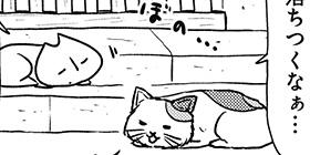 [884回]猫田びより