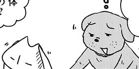 [914回]猫田びより
