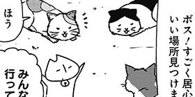 [934回]猫田びより
