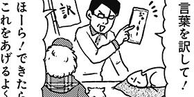 [945回]猫田びより
