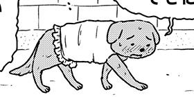 [947回]猫田びより